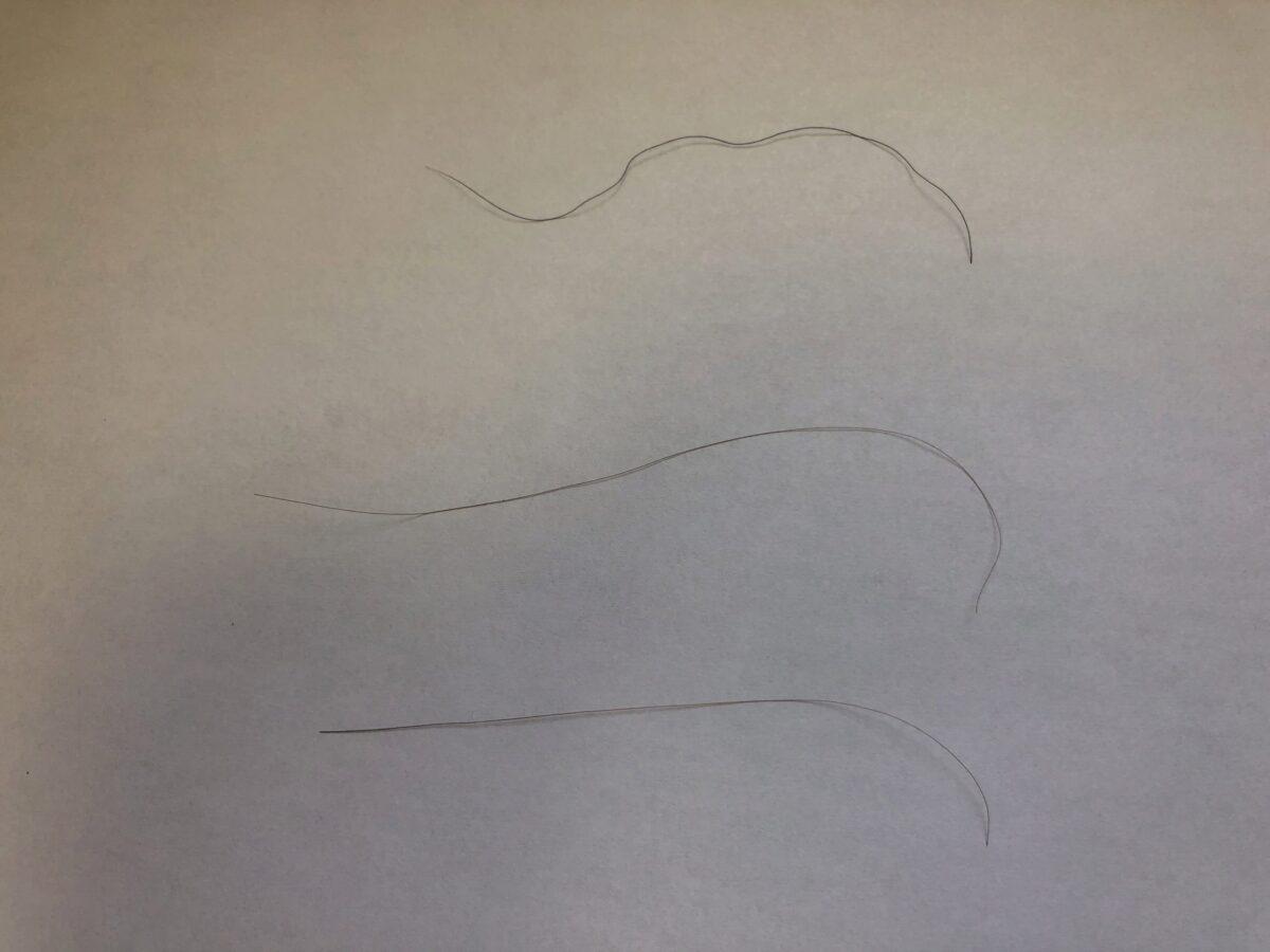 頭皮マッサージをしてから一ヶ月経過後の髪の毛の状態です