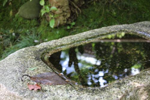 鎌倉の竹寺こと報国寺に行ってみた